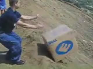 Carton Dell